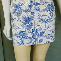Nwt Express Floral Skirt 7/8 Cream Blue Cotton Mini  Photo