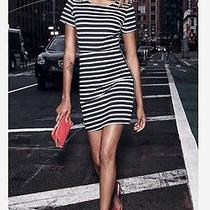 Nwt Express Women Navy and White Aline Stripped Dress 2016 Styles Photo