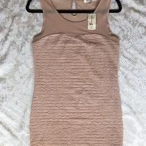 Nwt Forever 21 Blush Nude Sleeveless Mini Dress Sheer Top Sheath Bodycon Large Photo