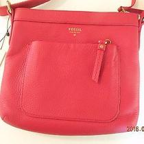 Nwt- Fossil Beautiful Popular Designer Shoulder/satchel Leather  Bag Photo