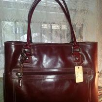 Nwt Fossil Executive Tote Oxblood Red Shopper Laptop Bag 13