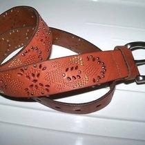 Nwt Fossil Perforated Stitch Embellished Tan Leather Belt Medium Free Ship Photo