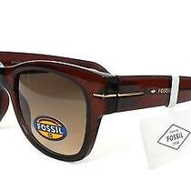 Nwt Fossil Sunglasses Women's Wayfarer Retro Logo Brown Pouch Photo