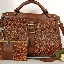 Nwt Fossil Vintage Revival Giraffe Haircalf & Leather Satchel & Full Wallet Set Photo