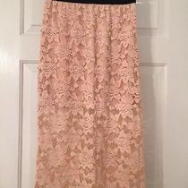 Nwt Free People Clothing Lace Pencil Skirt Blush Pink F585r341 Size S Photo