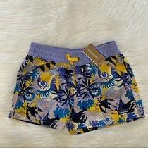 Nwt-Girls Patagonia Purple Tropical Shorts L Photo