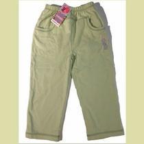 Nwt Gymboree Garden Bloom  Mint Green Cotton Jogging Sweat Pants 3t 2 - 3 Yr Vtg Photo