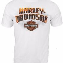 Nwt Harley Davidson Mens L Primo Biker White Tee Shirt Photo