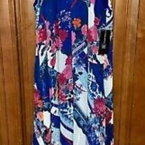 Nwt Inc Womens Ombre Bloom Dress Size Medium Photo