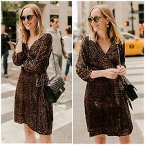 Nwt J. Crew Womens Size 2 Wrap Dress in Drapey Velvet Blush Leopard Print 158 Photo