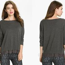 Nwt Joie Hilano Sweater Lace Charcoal Dark Heather Grey M  Photo