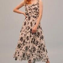 Nwt Keepsake Unique Skirt Ivory Bloom Womens Size Xs 0-2 Photo