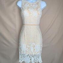 Nwt Lace Midi Dress Size Xs  Sabo Skirt Topshop Lulus Express House of Cb Asos Photo