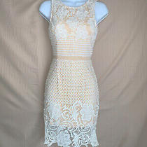 Nwt Lace Midi Dress Size Xs  Sabo Skirt Topshop Lulus Express House of Cb Asos Photo