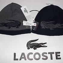 Nwt Lacoste Gray & Navy Blue 100% Wool Reversible Knit Gator Logo Winter Hat Os Photo