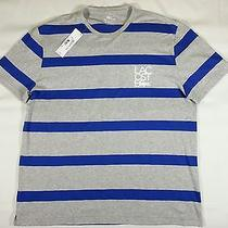 Nwt Lacoste Stripes Crew Neck Tee T-Shirt S/s Mens Size Xxl Gray / Blue Photo