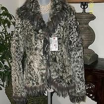 Nwt Lamb Fox and Rabbit Size Small Jacket Photo
