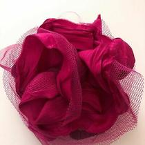 Nwt Lane Bryant Womens Hair Tie Pin Brooch Pink Lace Raw Hem Career Work Photo