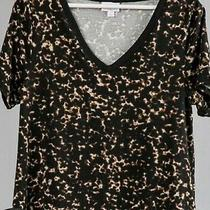 Nwt Lularoe Size 2xl Black Brown Tiny Cheetah Pattern Womens Christy T-Shirt Top Photo