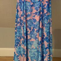 Nwt Minkpink Maxi Floral Blush Pink Blue Rose Dress Large Photo