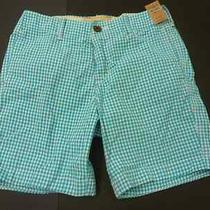 Nwt  Msrp 60 Hollister by Abercrombie Fitch Men Harbor Cove Shorts Photo
