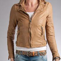 Nwt Muubaa Auriga Leather Biker Jacket Skinny Almond 10 (M) Uk 14 Photo
