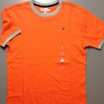 Nwt New Boys Tommy Hilfiger T Shirt Top Size 20 Xl Short Sleeve Orange Ringer Photo