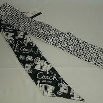 Nwt New Coach 100% Silk Ponytail Scarf - Signature C Black White Pony F98786 Photo
