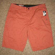 Nwt New Volcom Corpo Class Mens Vmonty Solid Shorts 36 Dress Lounge Surf Surfing Photo