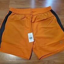 Nwt Orange Theory Womens Shorts Size L Photo