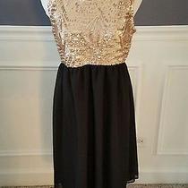 Nwt Pink Blush Black Sequin Chiffon Dress Sz M Photo
