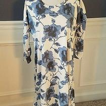 Nwt Pink Blush Maternity Cream/blue Floral Dress Sz M Photo