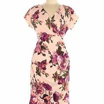 Nwt Pink Blush Women Pink Casual Dress M Photo