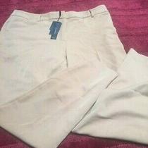 Nwt Robert Rodriguez Beige Pants Size 16 Photo