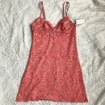 Nwt Sexy Blush Lingerie Pink Lace Chemise Teddy Xs Photo