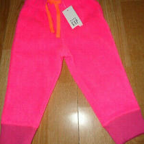 Nwt Size 12-18  Baby Gap Neon Pink Joggers Photo