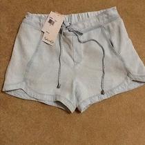 Nwt Splendid Polar Ice Blue Denim Dolphin Shorts - Xs Retail 88.00 Photo