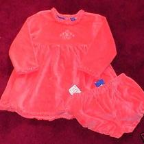 Nwt Toddler Salmon Berry Blush Dress Bloomers Greendog 24 Months New Velour  Photo