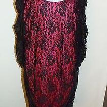 Nwt Torrid Plus Sz 4 Dress Black Fuschia Stretch Lace  Bow Back Pull Over  Photo
