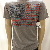 Nwt Urban Outfitters Chaser Fender Flag Gray Tee Shirt Size Large Photo