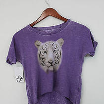 Nwt Urban Outfitters Chaser Kids Purple Hi Low Hem White Tiger Tee Shirt Size Xl Photo