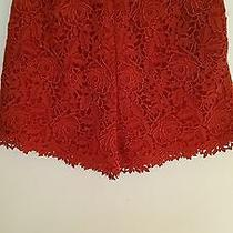 Nwt Valentino Red Lace Dress Shorts Sz 40 It 6 Us 2180 Rare Find Last One Photo