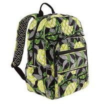 Nwt Vera Bradley La Neon Rose Campus Backpack New Photo
