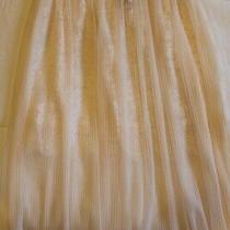 Nwt Victoria's Secret Sexy Lace Slip Skirt Gorgeous Blush Pink Small 88 Photo