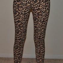 Nwt Victoria Secret Pink Leopard Print Fashion Leggings Medium Rare Brown Black Photo