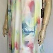 Nwt Vince Camuto Summer Bloom Maxi Dress 22w 3x Adj Straps Lined Aline Photo