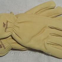 Nwt Vineyard Vines Winter Whale Deerskin Leather Gloves Beach Sz 8 Made in Usa Photo