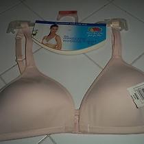 Nwt Woman's Blush Fotl Microfiber Soft Cup Wireless T Shirt Bra Size 34a Photo