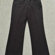 Nwt Womens Anne Klein Chocolate-Brown Dress Pants Slacks (10) Gold Lion Belt  Photo