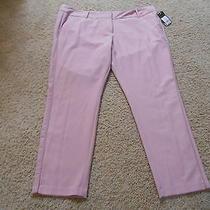 Nwt Women's Mossimo Blush Pink Dress Pants 18 Stretch 5% Spandex Inseam 28